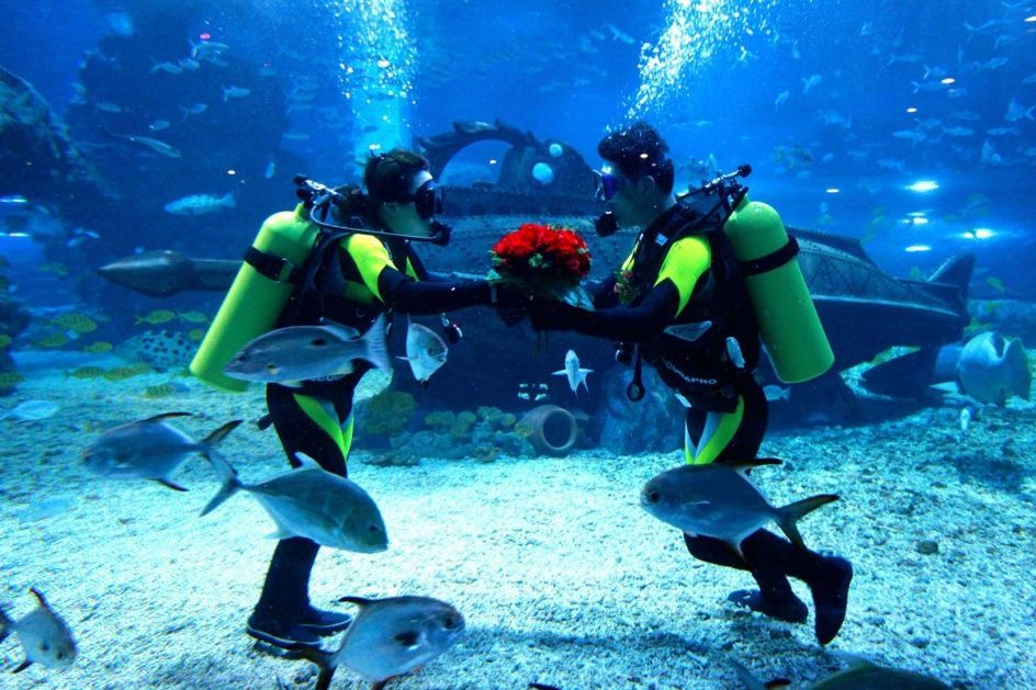 underwater-wedding.jpg