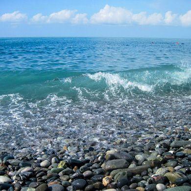 Отдых в адлере рядом с морем
