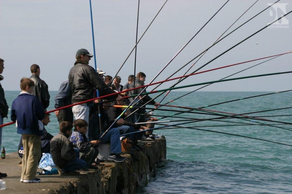 ловля султанки в черном море